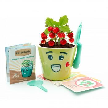 Vypestujte si jahôdky - detská sada pre pestovanie jahôd sa samozavlažovacím kvetináčom a výučbou angličtiny, zelená, Cuculi