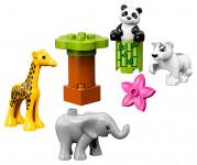 Lego Duplo 10904 Town Zvířecí mláďátka