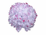 Květ voskový CHRYZANTÉMA bílo červený 14cm