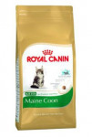 Royal Canin BREED Kitten Maine Coon 10 kg