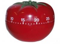 minutovník Paradajky plastový, 38.1005