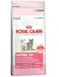 Royal Canin - Feline Kitten 36 10 kg