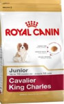 Royal Canin BREED Kavalír King Charles Junior 1,5 kg