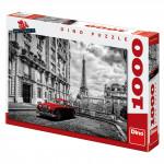 Jaguár v Paříži 1000D