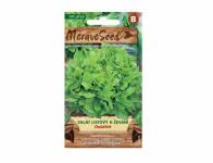 Osivo Salát listový k česání DUBÁČEK, zelený