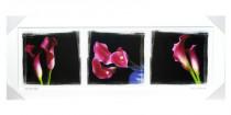 Obraz Růžové kaly v bílém rámu 2100 - VÝPREDAJ