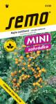 Semo Rajčiak kríčkový previsnuté - Tumbling Tom yellow 10s - séria Mini