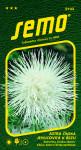 Semo Astrovka čínska - ihlicovitá Electric biela 0,5g