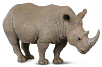 nosorožec biely