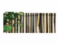 Rohož trstina lesklý 1x5m