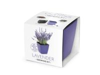 Vypestujte si levanduľu, darčeková sada sa samozavlažovacím kvetináčom, FIALOVÝ 13x13 CM, Domestic
