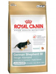 Royal Canin BREED Nemecký Ovčiar Junior 12 kg