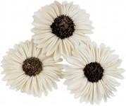 Dekorace - Sola Splite Sunflower 6 cm - 3 ks