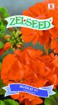 Seva Zelseed Muškát pásky - svetlo červená 8s