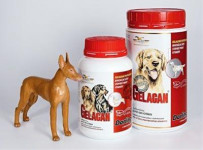 Gelacan plus Darling plv 500g