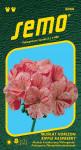 Semo Muškát krúžkovaný - Horizont Ripple Raspberry 11s