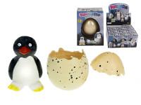 Tučniak liahnuce a rastúce vo vajíčku 6 cm