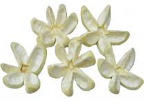 Dekorace - Bullet Flower 4 ks