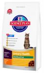 Hill's Feline Urinary Health&Sterilised 300 g