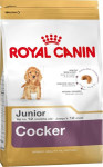 Royal Canin BREED KOKR Junior 3 kg
