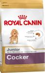 Royal Canin BREED KOKR Junior 3 kg