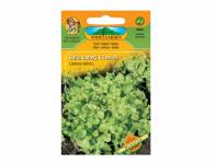 Šalát listový k česanie zelený Dubáček