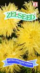 Seva Zelseed Astra ihlicovitú - vysoká žltá 0,7g