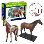 4D Model - Kůň