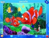 WD Nemo 40D