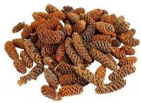 Dekorácie - Birch pine min. 30 g