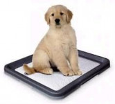 WC Puppy Nobby 62,5 x 48 x 3,8 cm