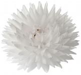Georgína vosková - malá biela