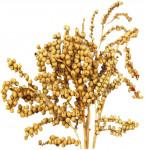 Dekorácie - Canella Cobs prírodná min. 30 g