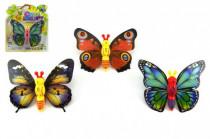 Motýl natahovací plast 10cm - mix variant či barev
