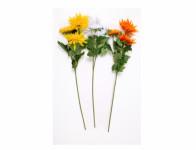 Chryzantéma X3 MIX 3 květy 65cm