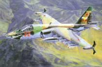 Model Suchoj Su-25K 21x20cm