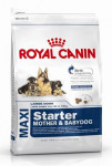 Royal Canin - Canine Maxi Starter M & B 4 kg