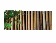 Rohož bambus 1,5x3