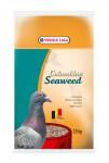 VL Colombine Seaweed pre holuby 2,5kg