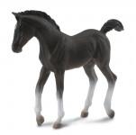 Tennessee Walking Horse - žriebä čierne