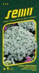 Semo Lobulária prímorská - Corbielle d´argent biela 0,6g
