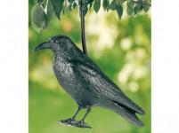 havran maketa na plašenie škorcov a holubov
