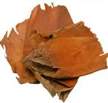 Dekorace - Palmová kůra - min. 50 g