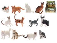 Mačka domáca / divoká 5-7 cm - mix variantov či farieb