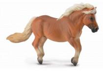 Shetlandský pony - ryšiak
