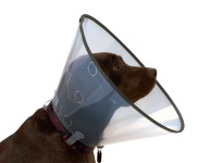 Límec Buster Comfort - clic collar 10cm 273901