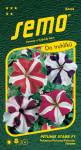 Semo Petunia veľkokvetý - Star F1 30p - VÝPREDAJ