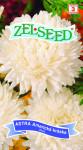 Seva Zelseed Astra Americká kráska - vysoká biela 0,7g