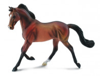 Plnokrvník kobyla hnedá