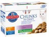 Hill 'Feline Kitten kaps.CH + Fish -Multipack 12 x 85 g